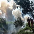 산불,피해,인도네시아,올해,건기,연기,지역,발생