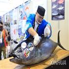 해산물,멸종,위기