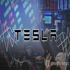 테슬라,투자자,국내,증시,미국,주식,투자
