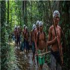 원주민,야노마미,코로나19,부족,거주지역
