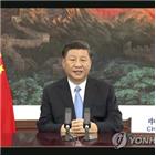 중국,목표,탄소,지적,이코노미스트,감축,실현