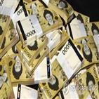 현금,화폐,잔액,코로나19,수요,발행