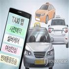 면허,택시,서비스,운송가맹사업,나비콜