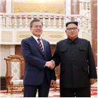 김정은,대통령,친서,호칭,공개,북한,각하,중국,외교,의전
