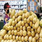 가격,장마,대비,태풍,판매,코로나19,열무김치,재료,샐러드