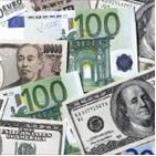 외환보유액,터키,미국,수준,한국,위기,환율,적정,달러화,나라