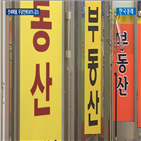 물량,전세,서울,전셋값,이후,전세난,아파트