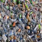 플라스틱,효소,분해,먹는,쓰레기