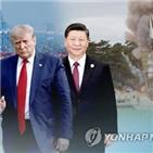 중국,미국,코로나19,부회장,오판,쇠퇴,가능성
