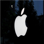 투자자,애플,테슬라,지난달,순매수
