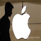 투자자,애플,국내,지난달,테슬라,기업