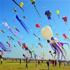 웨이,연날리기,국제,축제,중국