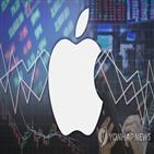 애플,투자자,국내,테슬라,지난달,주가