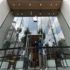 한국,애플,아이폰12,시장