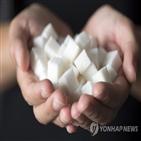 설탕,감소,저당,제품