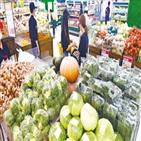 가격,상승,장마,채소,기간,배추,상추,과일,상황,전망