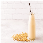 단백질,제품,출시,식물성,사용,증가,원재료