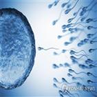 코로나19,정자,세포,연구팀,바이러스