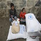 식량,지원,재난,가장,노벨평화상,세계,분쟁지