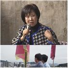 의원,부동산,목포,손혜원,선정,원도심,개발