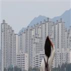 아파트,서울,평균,올해,가장,작년,실거래가,강남구