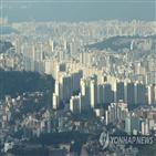 아파트,서울,평균,올해,가장,실거래가,작년