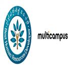 인증,멀티캠퍼스,학습,임직원,우수기관