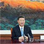 홍콩,선전,경제,주석,정책,장관