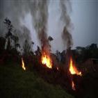 브라질,연구소,화재,아마존,사임