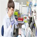 유전자,가위,기술,염기,이용,유전질환,변이,치료,개발