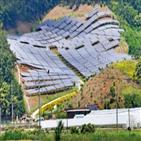 태양광,전력,출력제한,문제,한전,공급,설비,사업자,제도,정부