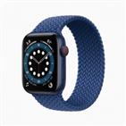 애플,애플워치,아이패드,기능,설명,서비스,성능,에어,혈중,아이클라우드