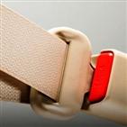 자동차,안전벨트,에어백,일본,다카다,확인