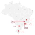코로나19,도시,지방선거,브라질