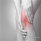 관절,통증,관절염,환자,악화,부위,약물치료