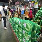 배추,가격,포기김치,도매가격,상승