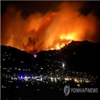 산불,화재,대형,대피령
