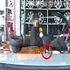 타이어전문점,교체,본사