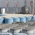 오염수,해양,일본,후쿠시마,방출,정부,물질