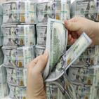 달러,감소,외화예금