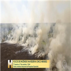 연구소,예산,브라질,화재,부족,활동