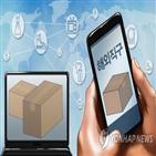 구매,불만,전자제품,관련,소비자,대행,해외직구,해외,사업자