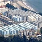 오염수,탱크,결정,정부,일본,해양,방출,후쿠시마