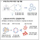 바이러스,세포,코로나19,감염