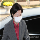 사건,수사,혐의,검찰총장,서울중앙지검