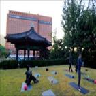 요가,프로그램,태국,서울,웰니스,호텔