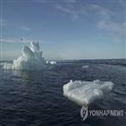 기온,얼음,반사,지구,알베도