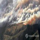 산불,카운티,강풍,바람,어바인,확산