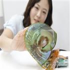 디스플레이,한국,작업반,내구성,의장,표준화