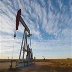 미국,원유,전망,석유,가격,하락폭